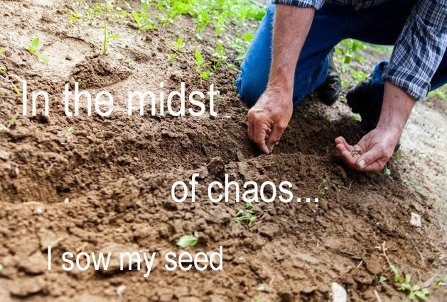 {2}sowingseed071718